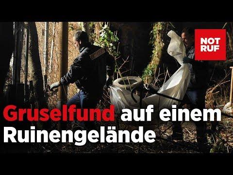 Skelett bei Abrissarbeiten in Berlin gefunden
