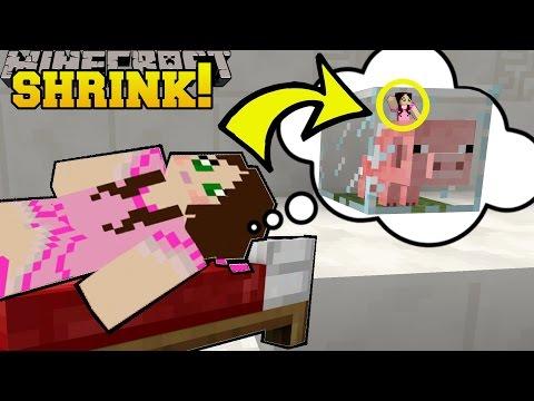 Minecraft: SHRINKING INSIDE A BABY PIG!!! - Asleep 2 - Custom Map [1] (видео)