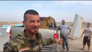 ماذا يفعل الأسد برفقة هؤلاء الجنود؟