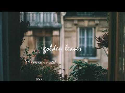[vietsub] Golden Leaves (Acoustic) - Passenger - Thời lượng: 4 phút, 8 giây.