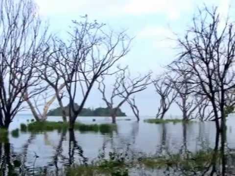 Lago Los Tacariguas - Lo que no pudo hacer Rafael Isea le quedo grande Aragua Y sus compañeros de gobierno : Freddy Arenas, Prof. Henry Crespo (Presidente), Dr. Aníbal José Lanz P...