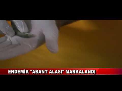 ENDEMİK 'ABANT ALASI' MARKALANDI