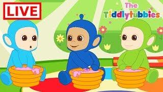 Video 🔴 LIVE Teletubbies ★ NEW Tiddlytubbies LIVE Cartoons ★ New Cartoon Episodes 1-4 ★ Cartoons for Kids MP3, 3GP, MP4, WEBM, AVI, FLV Juni 2018