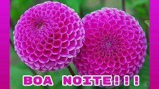 Mensagens lindas - MENSAGEM LINDA DE BOA NOITE!!! MENSAGEM DE BOA NOITE