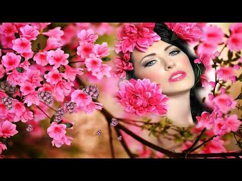 Video Bewafa tune Tune Pyar Mai Badnam Kar Dala  DJ Jhankar  Hd Video  Song  2018 download in MP3, 3GP, MP4, WEBM, AVI, FLV January 2017