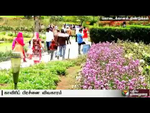 Cauvery-protests-affects-tourism-in-Kodaikanal--Details
