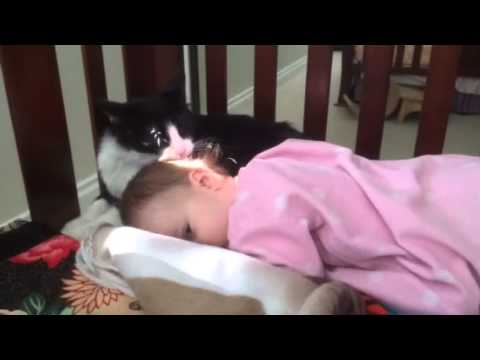 This Kitty-Cat Just Wants To Clean the Baby Up a Little! SO CUTE!!!