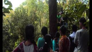 TKM Institute of Management 19th Batch (B) Outbound Training at Wayanad, Kerala