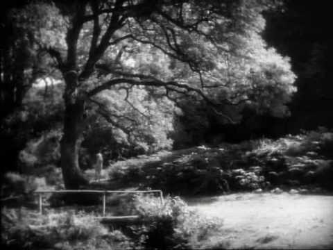 Tekst piosenki Franco Battiato - I Giorni Della Monotonia po polsku
