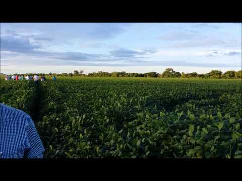 Agrodistribuidor na Estrada - Província de Santa Cruz - Bolívia