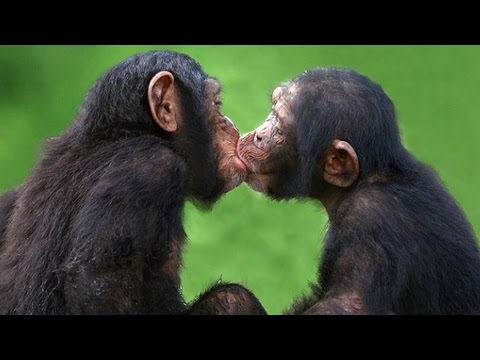 10 Juicy Facts About Kissing