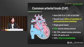 2019 서울아산병원 산부인과 30주년 기념 심포지움 - 제 9회 태아치료센터 워크샵 : Uncommon congenital heart diseases 미리보기