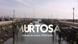 Murtosa Portugal  city photo : MURTOSA, Aveiro
