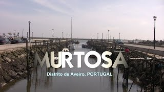Murtosa Portugal  city photos gallery : MURTOSA, Aveiro
