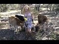 Diggin Britt n Friends Explorin' the Farm