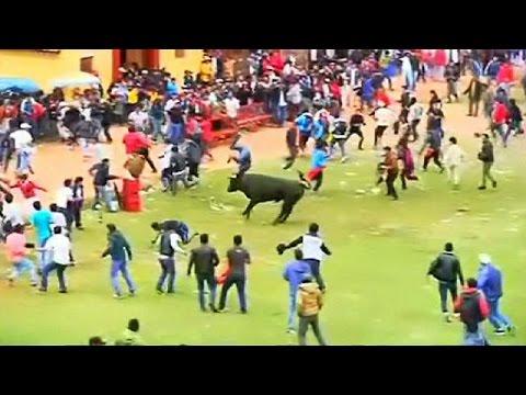Περού: Μαινόμενοι ταύροι