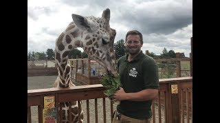 Animal Adventures with Jordan Series Tuesdays & Thursdays Each video features another animal ambassador of Animal Adventure Park