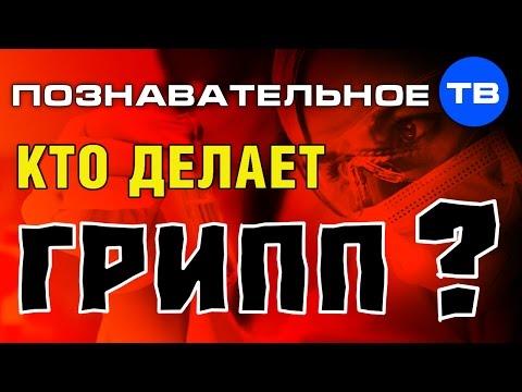 Кто делает грипп (Познавательное ТВ Пламен Пасков) - DomaVideo.Ru