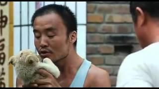 梦之队 DVD 中国第一部儿童篮球电影