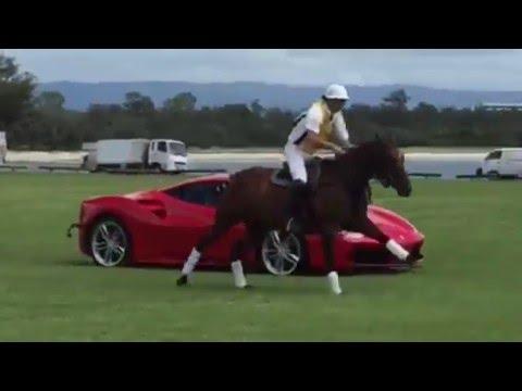 Ferrari vs póló póni