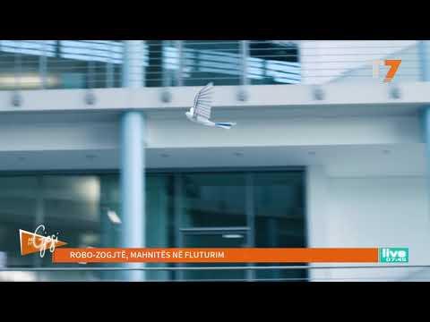 #gjesi: Robo-zogjtë, mahnitës në fluturim