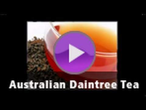 tea - Check out the Australian Daintree Tea: http://www.teas.com.au/Black_Tea-Others-Australian_Daintree.aspx?pi=1158 North Queensland's Daintree tea plantation pr...
