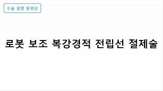 로봇 보조 복강경적 전립선 절제술 미리보기