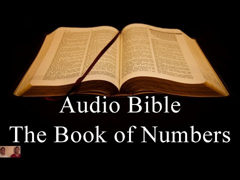 The Book of Numbers - NIV Audio Holy Bible - High Quality and Best Speed - Book 4