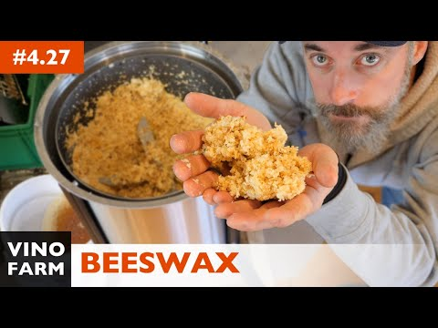 Beeswax and Honey Harvest - Using a Wax Spinner!