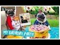 Doug The Pug's Birthday Party