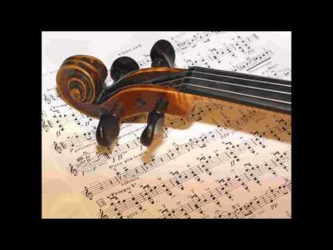 [HD]Classical Music While You Work Week 16