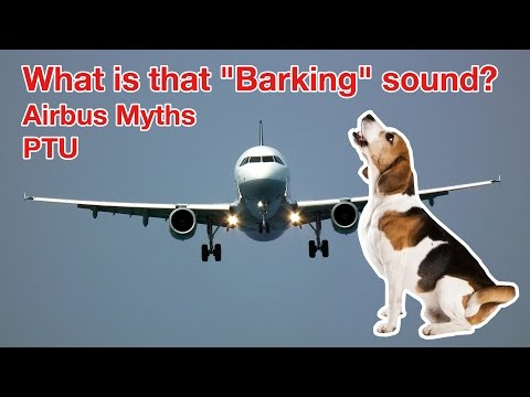 "MYSTERIOUS BARKING SOUND On AIRBUS? All About The PTU Explained By ""Captain""Joe"