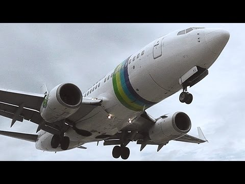 Transavia 737-700 Low Landing & Extreme Jetblast on Takeoff - Skiathos, the Second St Maarten