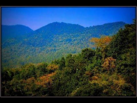 Video दलमा पहाड़ के ऊपर का अदभुत नज़ारा (Nature & Wildlife Areas) download in MP3, 3GP, MP4, WEBM, AVI, FLV January 2017