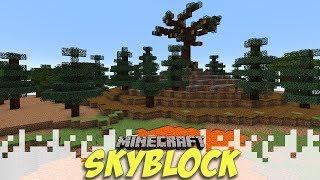 TONS OF WORK! - Skyblock Season 3 - EP08 (Minecraft Video)
