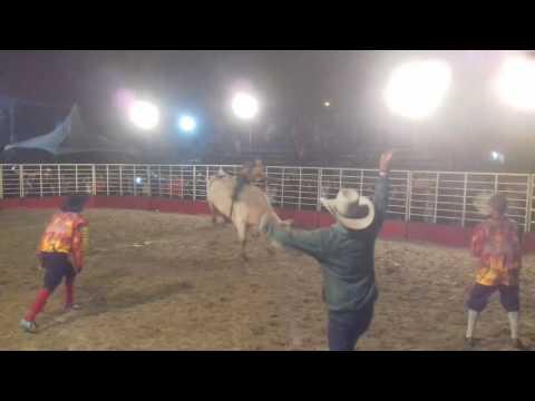 Fred Mendes de Taubaté na Final do Rodeio em Touros de Silveiras-SP(Touro Importado da Cia Nova Era)