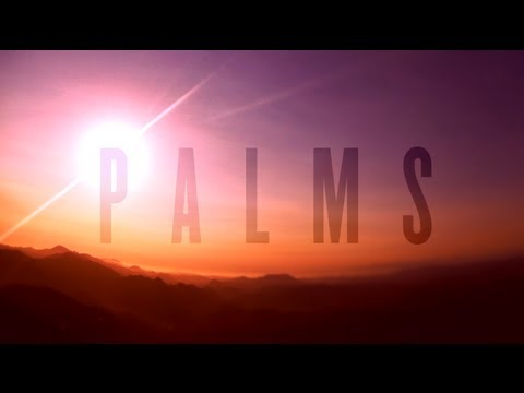 PALMS - Future Warrior