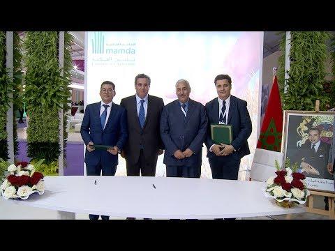 سيام 2019.. التعاضدية الفلاحية المغربية للتأمين تطلق منتوج تأمين جديد على الدواجن