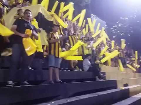 Recibimiento de La Raza Aurinegra al Club Guarani vs Capiata 22.10.2016 - La Raza Aurinegra - Guaraní de Asunción