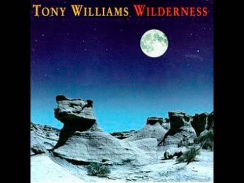 Tony Williams – Wilderness