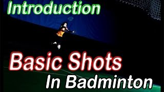 Video Badminton Beginners - Introduction of Basic Shots in Badminton MP3, 3GP, MP4, WEBM, AVI, FLV Januari 2019