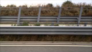 9. Rapid Rabbits - Harley VS. Triumph