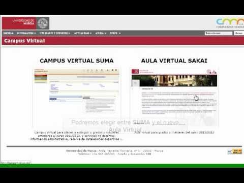 aula virtual umu}
