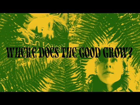 Where Does The Good Grow? Episode 12 [The Finale aka The Bear Episode]