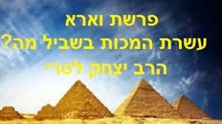 הרב יצחק לסרי – פרשת וארא – עשרת המכות