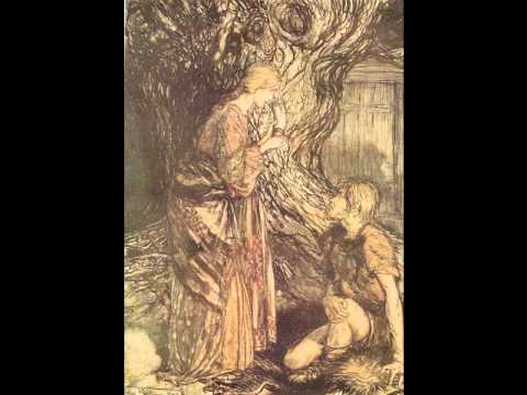 Richard Wagner - Die Walküre - Der Ring des Nibelungen - act 1^ part 1
