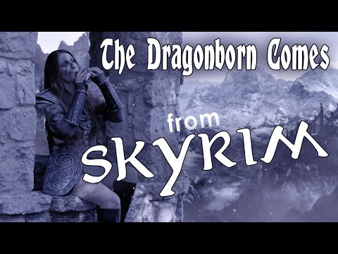 "Skyrim Bard  ""The Dragonborn Comes"" Cover by STL Ocarina"