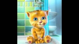 Ginger y su chiste de como se dice gatito en chino