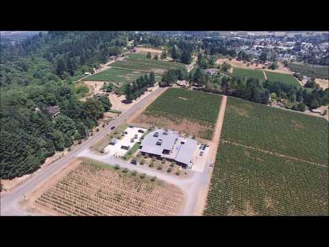 Domaine Roy winery in Dundee Oregon.