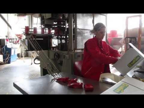 Šafram – otvorenje radova na proizvodnoj hali
